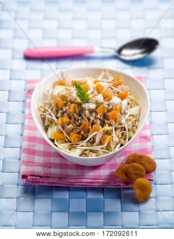 salad with spelt dried apricot soy sprouts and raw fennel, selective focus