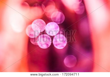 Abstract closeup background with blurred shining bokeh lights