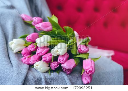 Bouquet of pink and white tulips with pink ribbon on gray blanket at pink sofa