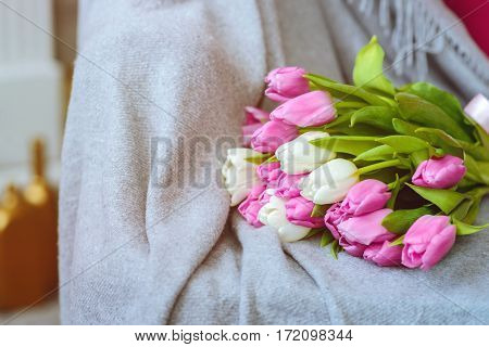 Bouquet of pink and white tulips with pink ribbon on gray blanket at sofa