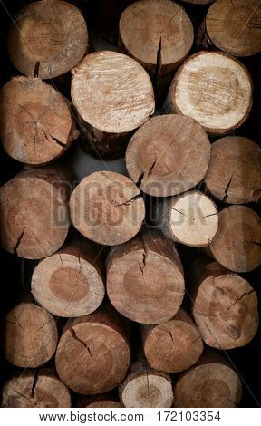 Stacked logs of wood, close up view