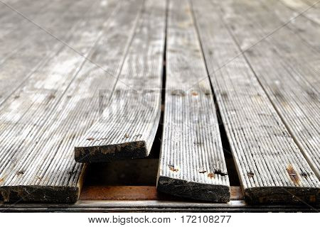 Exterior pine wooden floor bending due to Climate Change front focus blurred background