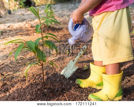 Gardening and Planting conceptKid giving water to plant after planting young tree over sunlight