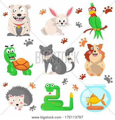 Cartoon pets colorful collection with their footprints on white. Vector poster of domestic animals living with people, green parrot and snake, grey cat and hedgehog, golden fish, light hare.