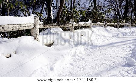 Snow Walkway And Railing In The Forest Noboribetsu Onsen