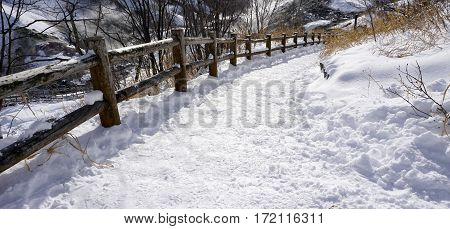 Snow And Curved Walkway In The Forest Noboribetsu Onsen
