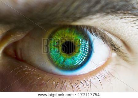 Handsome man macro green eyes close up