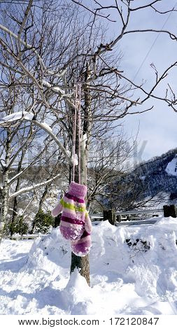 Snow Gloves Hanging With The Tree In The Forest Noboribetsu Onsen