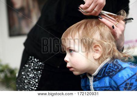Boy Having A Haircut First Time