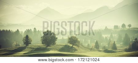 Vintage Landscape With Trees On Hills