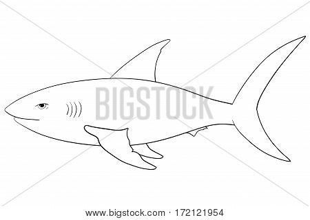 Shark. Hand drawn outline sketch. Vector illustration isolated on white background
