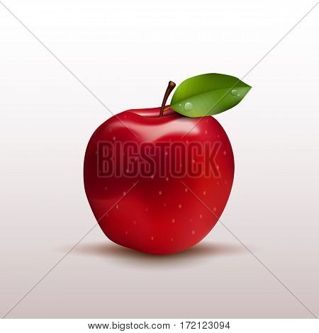 Red apple with green leaf lisolated on white photo-realistic vector illustration