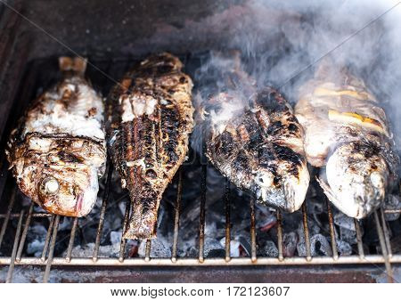 Grilled fish barbecue with spices and lemon on the grill close up