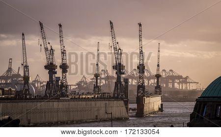 Port of Hamburg with cranes at dusk, Germany