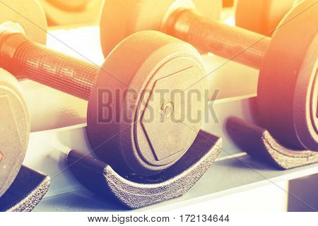 Close up rows of dumbbells in the gym
