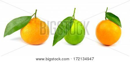 Mandarine, lime, orange. Isolated on white background