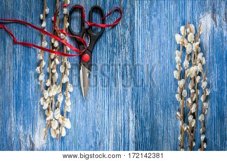 Blooming willow twigs on blue wooden table