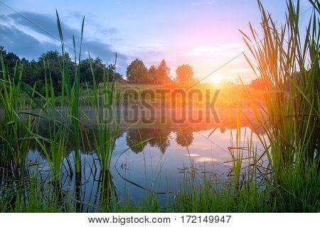 Sunset On The Lake In The Summer