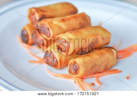 spring roll dish with vegetable spring roll