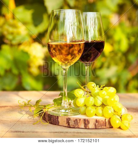 Green Grapes And Two Glasses Of The White And Red Wine On The Vineyard Background