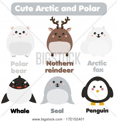 Cute kawaii arctic and polar animals set. Reindeer seal whale penguin in children style vector illustration. Stickers educational illustrations isolated design elements for kids books