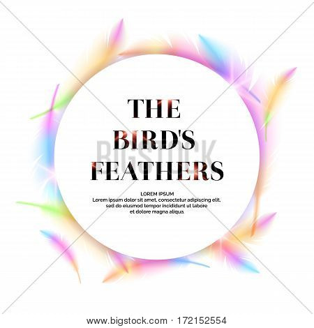Bright bird feathers on a white background. Fashionable and modern vector poster.