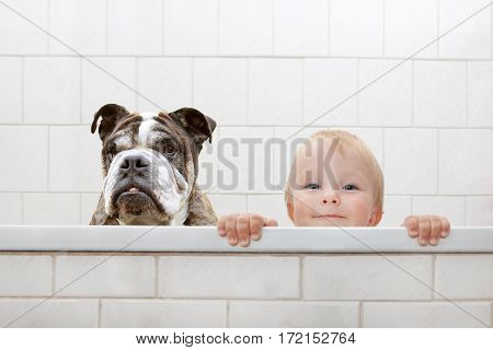 small child and a dog in a bathtub poster