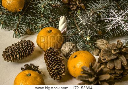 Fur-tree branch with cones tangerines and nuts