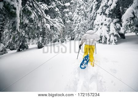 Traveller Vigorously Goes On Snowshoes