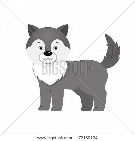 Grey wolf, illustration for children. Design element for baby shower card, scrapbooking, invitation, childish accessories. Isolated on white background. Vector illustration.