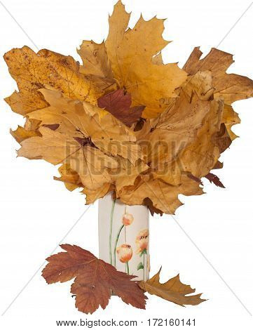 Armfuls of dry leaves in a ceramic vase on a white background