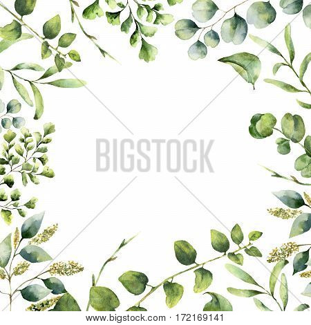 Watercolor floral frame. Hand painted plant card with eucalyptus, fern and spring greenery branches isolated on white background. Print for design or background