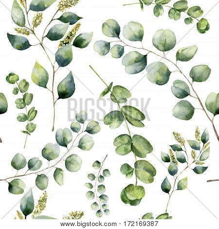 Watercolor pattern with eucalyptus. Hand painted floral ornament with silver dollar, seeded and baby eucalyptus branches isolated on white background. For fabric, print or design.