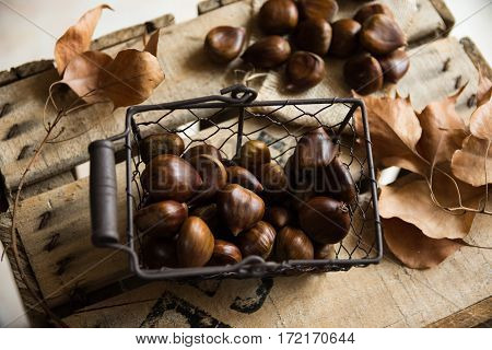Fresh chestnuts in wire basket scattered on burlap cloth dry brown leaves on vintage wood box autumn fall harvest cozy atmosphere top view close up