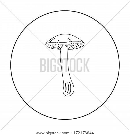 Brown cap boletus icon in outline style isolated on white background. Mushroom symbol vector illustration.