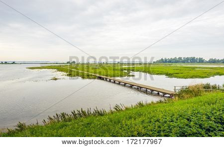 Dutch nature reserve in the summer season with a long footbridge over the water. Many nettles bloom on the banks.