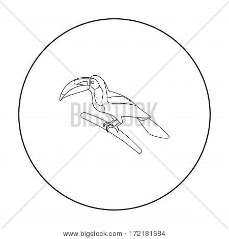 Mexican keel-billed toucan icon in outline style isolated on white background. Mexico country symbol vector illustration.