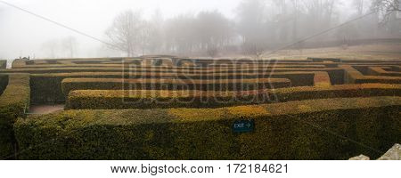 Geometric pattern of green hedge flowerbed in autumnal fog