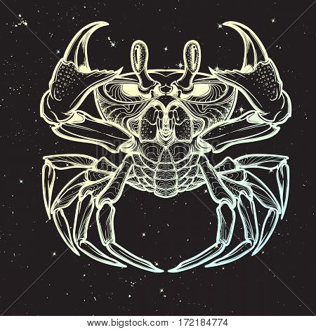 Cancer. Accurate symmetrical drawing of the beach crab on the black night sky background with stars. Concept art for tattoo, horoscope. EPS10 vector illustration
