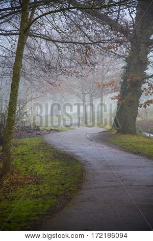 Rising mist over peaceful park with empty road. Trees on far shore obscured by fog.