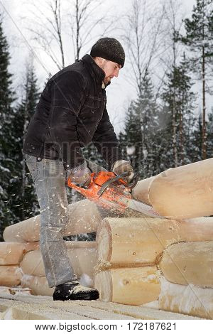 Leningrad Region Russia - February 2 2010: Construction of log house a young worker sawed timber using a chainsaw.