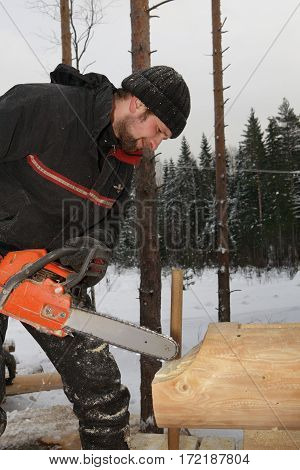 Leningrad Region Russia - February 2 2010: Woodworker is brushed saddle notch with chainsaw on log cabin wall.