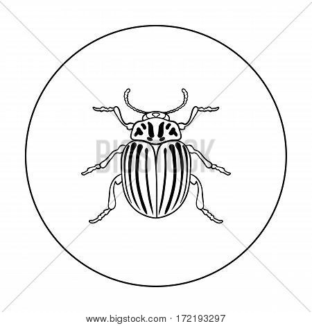 Colorado beetle icon in outline design isolated on white background. Insects symbol stock vector illustration.
