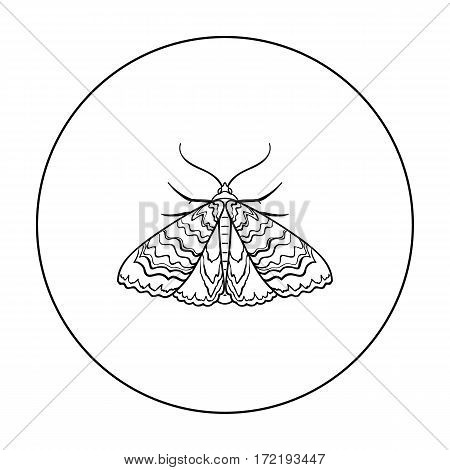 Moth icon in outline design isolated on white background. Insects symbol stock vector illustration.