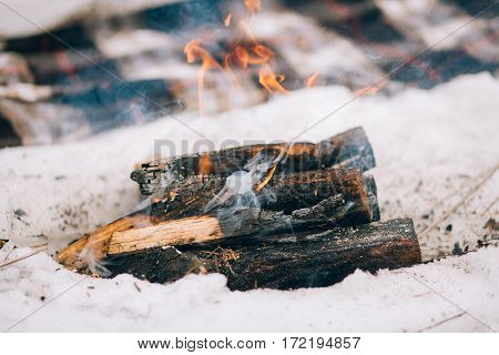 Burning Firewood In Campfire For Winter Picnic.