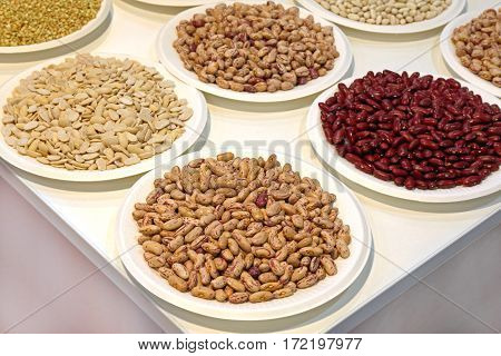 Variety of Legume Beans Seeds at Trays