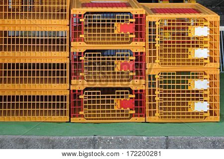 Plastic Cages for Poultry and Birds at Farm