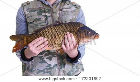 Carp In The Hands Of The Amateur Angler.