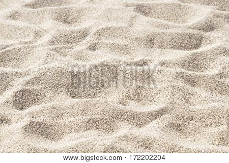 Beach sand texture close up as background
