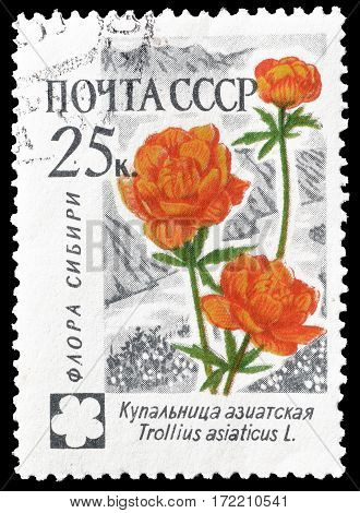 SOVIET UNION - CIRCA 1960 : Cancelled postage stamp printed by Soviet Union, that shows Asian Globe flower.